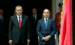 erdogan nishani
