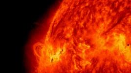 dielli