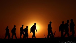 refugjatet siri