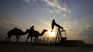 deve-nafta