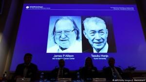 Nobel mjekesi
