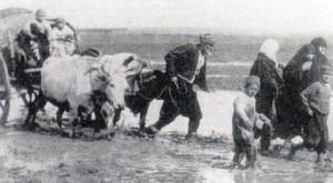 shperngulja e shqipetareve