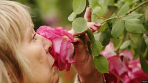 smellin rose