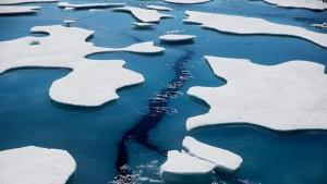 Arktiku